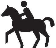Jezdec na zvířeti
