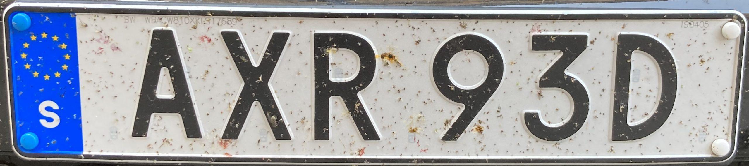 Registrační značka Švédsko, běžná, foto: www.podalnici.cz